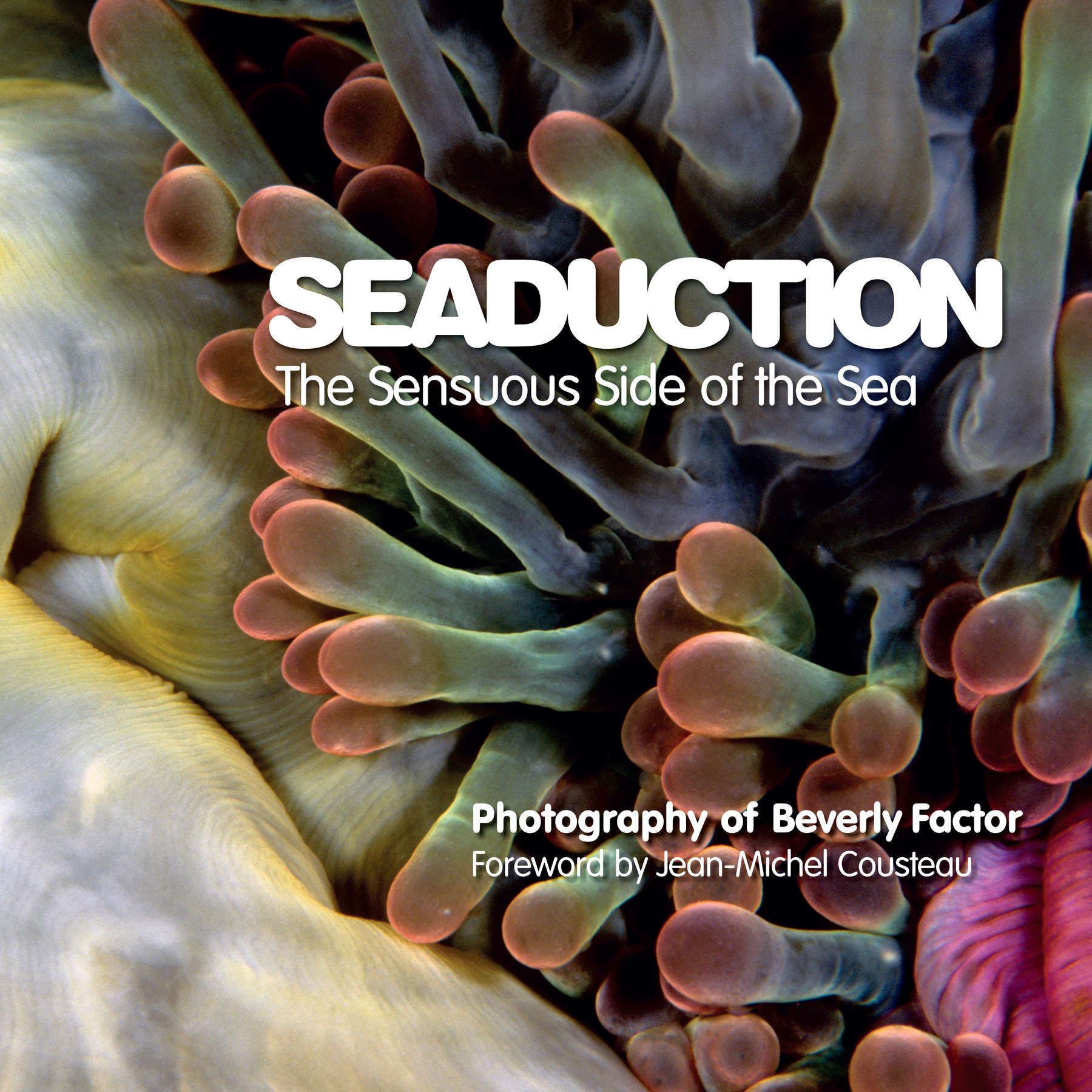 Seaduction01 bfactor